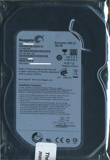 ST3160318AS (160GB SATA300 7200)